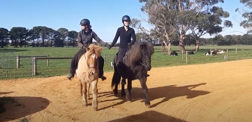 July Fun Games – Pair Dressage